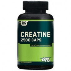 OPTIMUM NUTRITION CREATINE 2500 - 200 caps