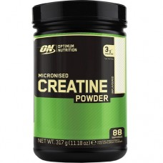 OPTIMUM NUTRITION MICRONIZED CREATINE POWDER - 317 g